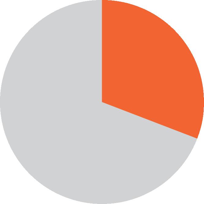 Income Pie Chart 31 Percent
